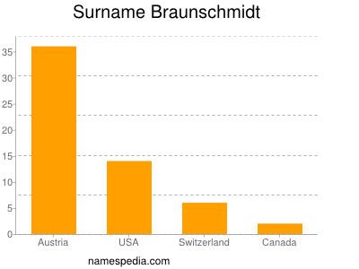 Surname Braunschmidt