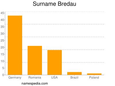 Surname Bredau