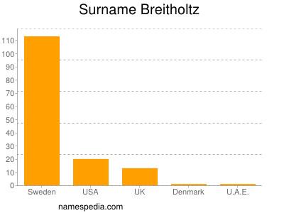 Surname Breitholtz
