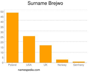 Surname Brejwo