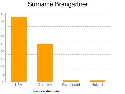 Surname Brengartner