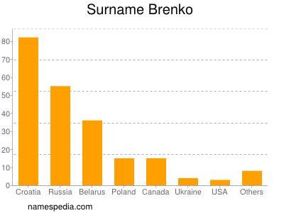 Surname Brenko