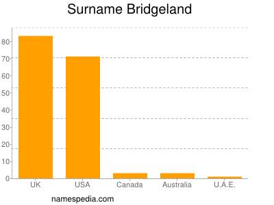 Surname Bridgeland