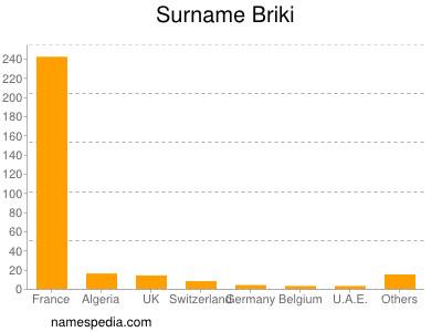 Surname Briki
