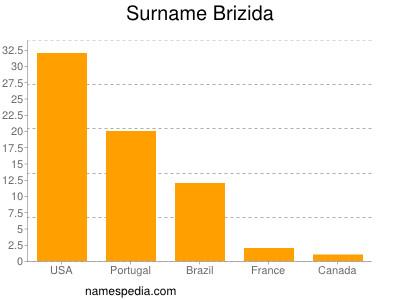 Surname Brizida