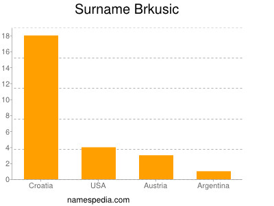Surname Brkusic