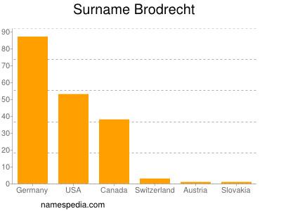 Surname Brodrecht