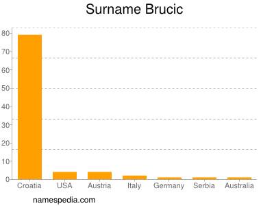 Surname Brucic