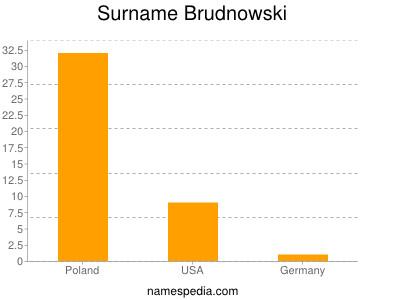 Surname Brudnowski