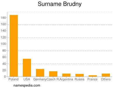 Surname Brudny