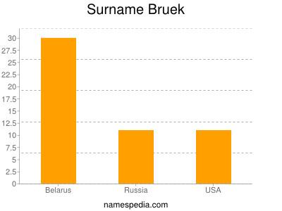 Surname Bruek