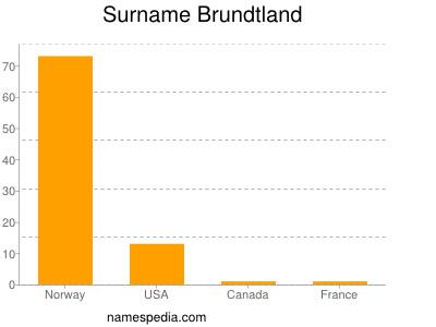 Surname Brundtland