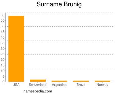 Surname Brunig