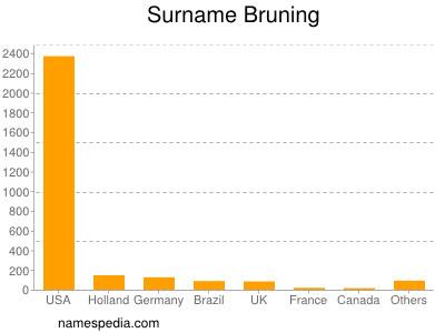 Familiennamen Bruning