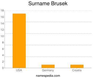Surname Brusek