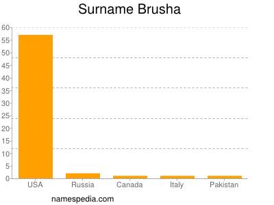 Surname Brusha