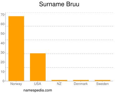 Surname Bruu