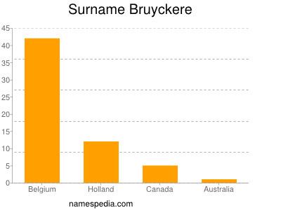 Surname Bruyckere