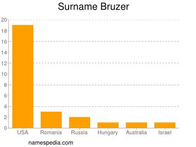 Surname Bruzer