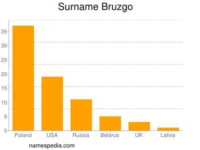 Surname Bruzgo
