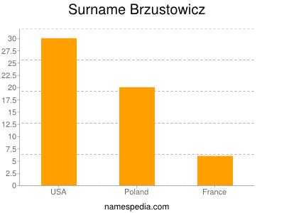 Surname Brzustowicz