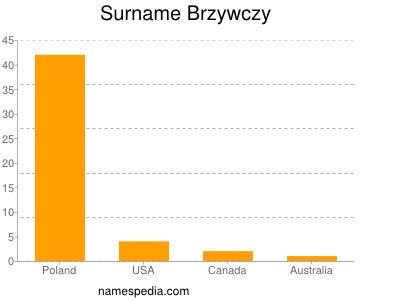 Surname Brzywczy
