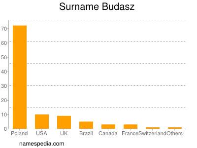 Surname Budasz