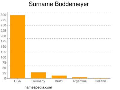 Surname Buddemeyer