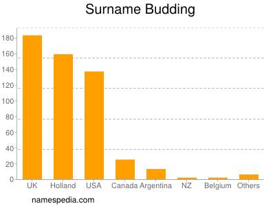 Surname Budding