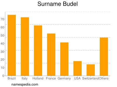 Surname Budel