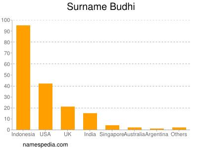 Surname Budhi