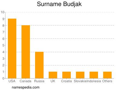 Surname Budjak