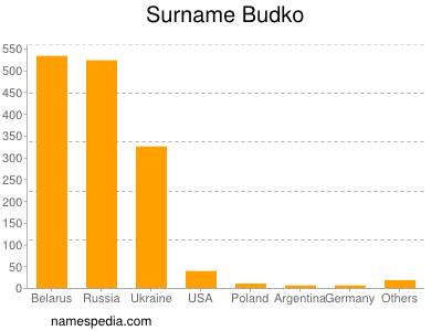 Surname Budko