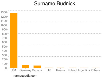 Surname Budnick