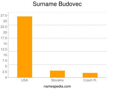Surname Budovec