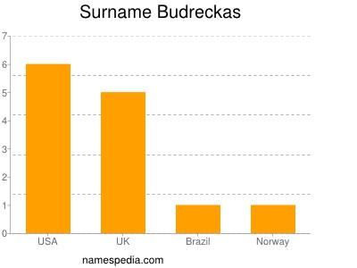 Surname Budreckas
