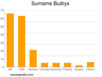 Surname Budrys