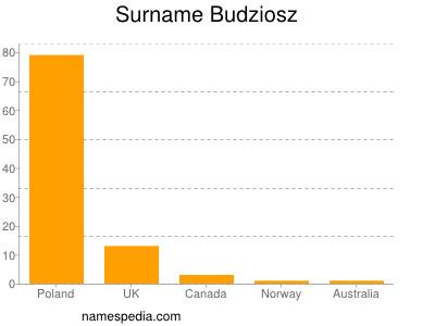 Surname Budziosz