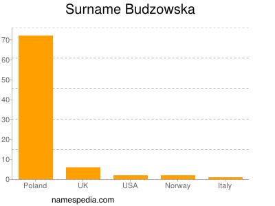 Surname Budzowska