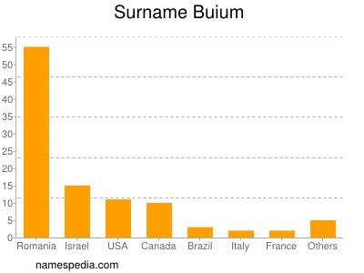 Surname Buium