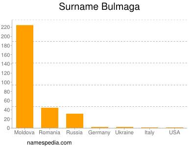 Surname Bulmaga