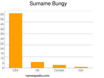 Surname Bungy