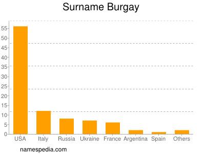 Surname Burgay