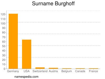 Surname Burghoff