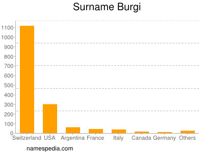Surname Burgi