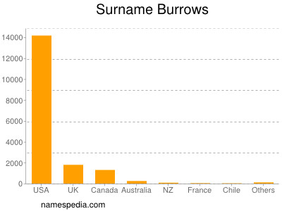 Surname Burrows