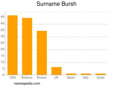 Surname Bursh