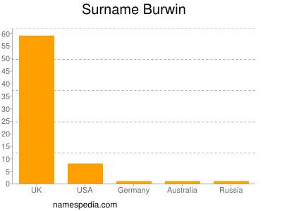 Surname Burwin
