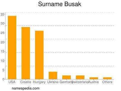 Surname Busak