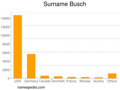 Surname Busch